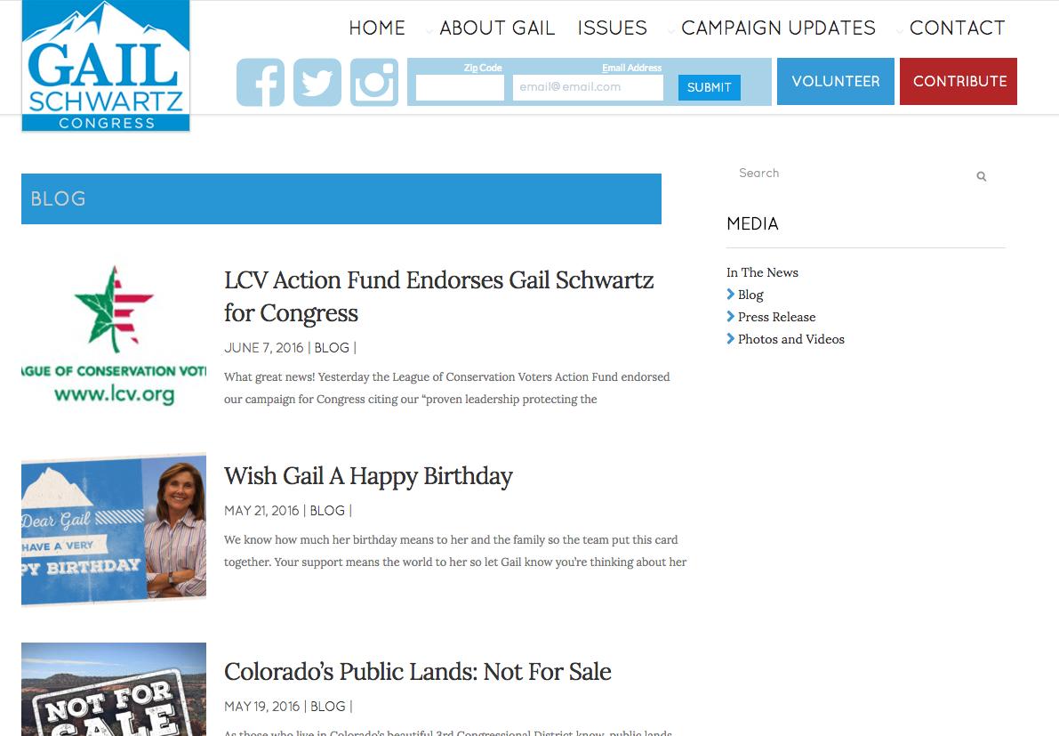 Gail Schwartz web site