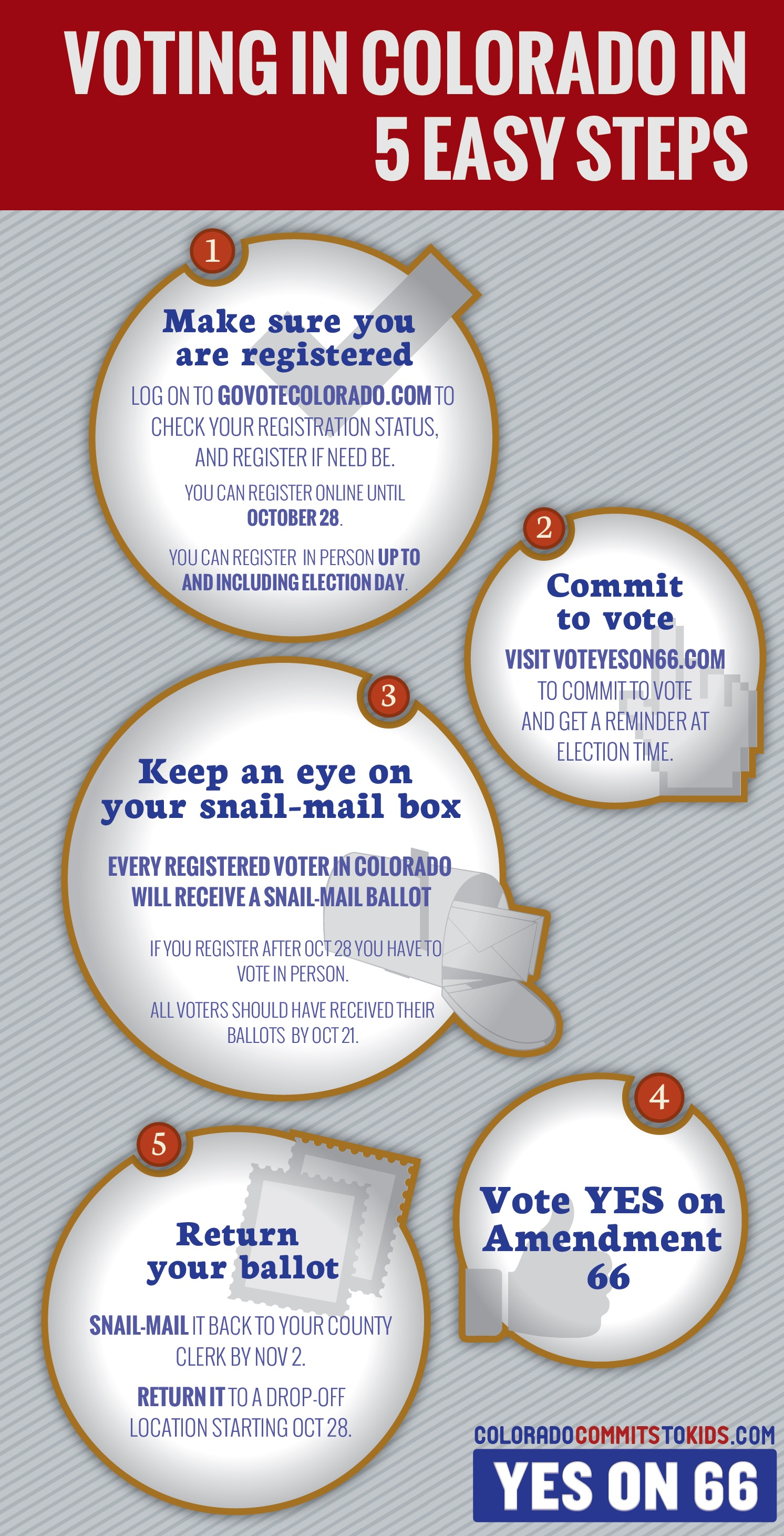 "Amendment 66 ""Voting in Colorado in 5 Easy Steps"" infographic"