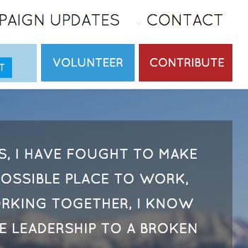 SCHWARTZ FOR CONGRESS WEB SITE