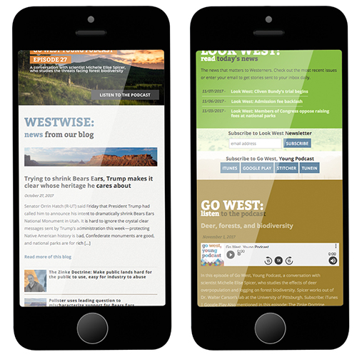 CWP mobile responsive